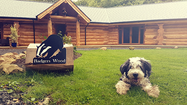 Stay on site at Badger's Wood