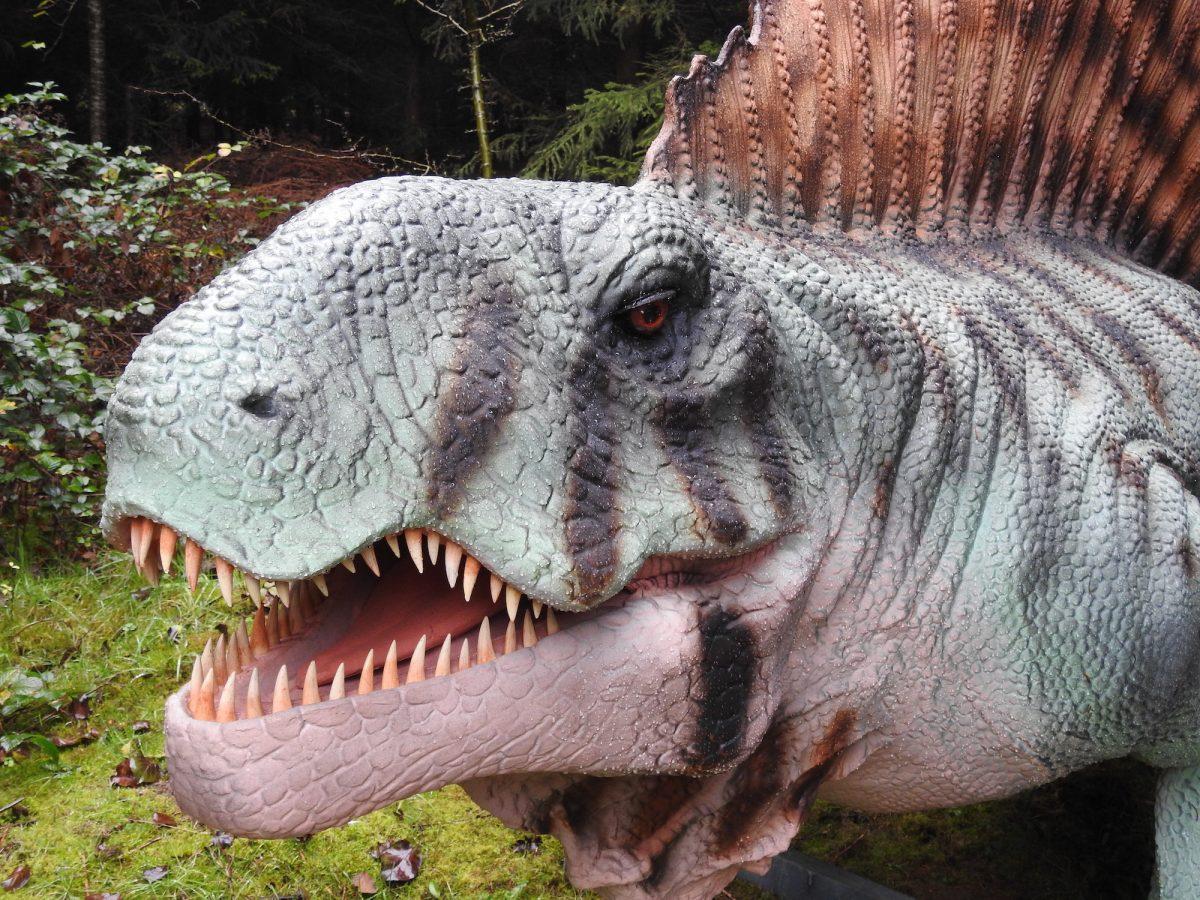 Hoo Zoo and Dinosaur World FAQ